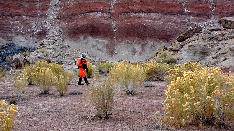 Martian flora 1