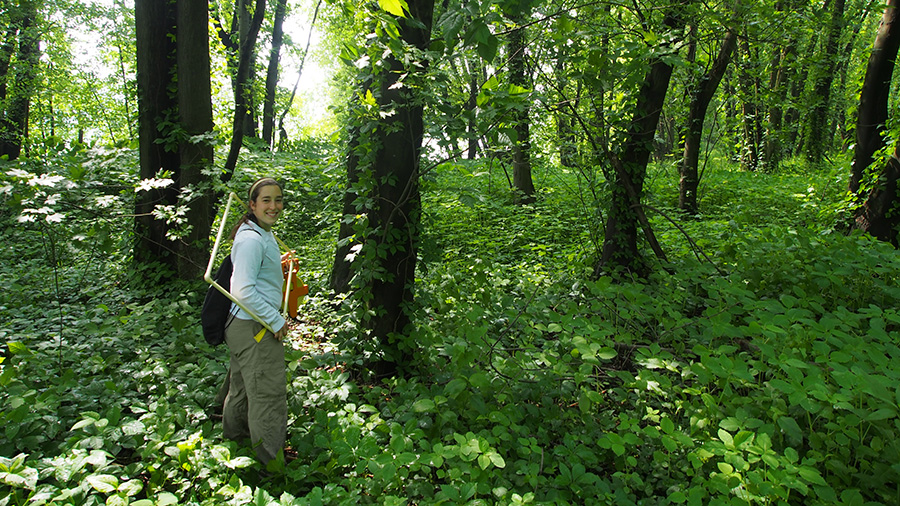 Anna Freundlich, student co-author of the research paper in Biodiversity Data Journal, heading into a survey site.